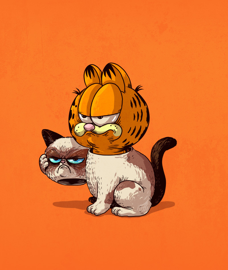 grumpycat_iu_800