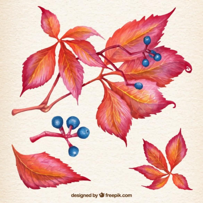 wpid-natural-autumn-leaves_23-2147520419-1170x1170