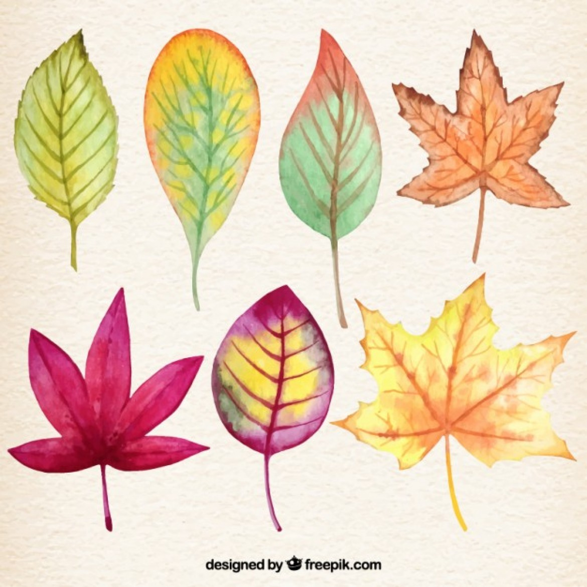 wpid-watercolor-autumnal-leaves_23-2147520416-1170x1170